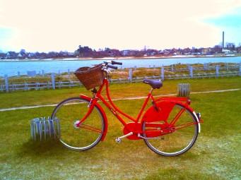 Kopenhagen Amager Strand