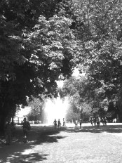 Brüssel - Warandepark