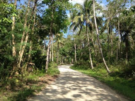 Bohols Inselinnere