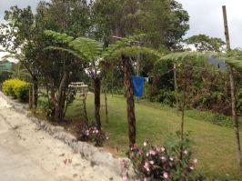 Der Hostel-Garten